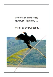 Greeting card - Bird on a limb